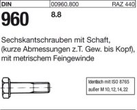 DIN960 M20x1,5x75