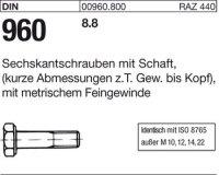 DIN960 M20x1,5x80