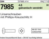 Linsenschrauben M6x50-H