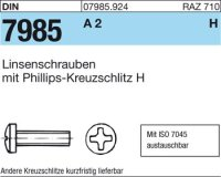 Linsenschrauben M2,5x18-H