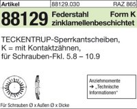 TECKENTRUP-Sperrkants. K10x20,25x1,6