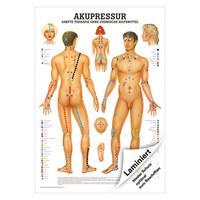 """Mini-Poster """"Akupressur"""", LxB 34x24 cm"""
