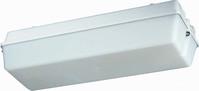 LED-Not-Rettungsleuchte IP65 SK I 1h 131 201/1 W MA