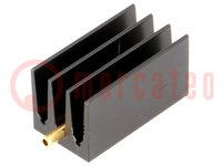 Heatsink: extruded; grilled; TO220; black; L:30mm; W:16mm; H:16mm