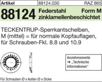TECKENTRUP-Sperrkants. M4x10,2x1