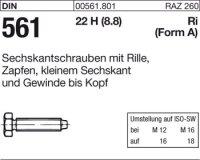 DIN561 AM10x30