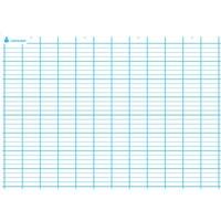 ART PLUS Carte Seyès simple. En polypro 5/10è effaçable à sec format 70x100cm