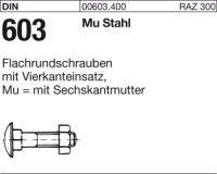 DIN603 M10x100