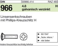 Linsensenkschrauben M6x80-H