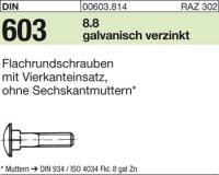 DIN603 M8x25