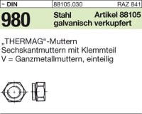 6kt.Thermag-Muttern M8SW13