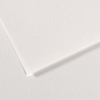 CANSON Feuille MI-TEINTES® 50X65 160g blanc 335
