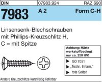 Linsensenk-Blechschr. C4,8x45-H