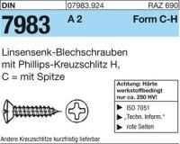 Linsensenk-Blechschr. C6,3x25-H