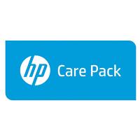 Hewlett Packard Enterprise U3BA0E IT support service