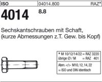 ISO4014 M22x110