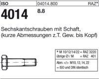 ISO4014 M22x170