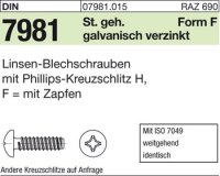 Blechschrauben F6,3x16-H