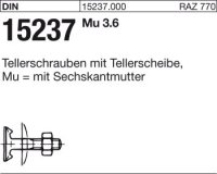 Tellerschrauben M6x20