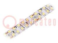 LED szalag; fehér hideg; LED/m:240; SMD; 24V; 3528; W:15mm; PIN:2