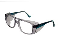 HONEYWELL Schutzbrille HORIZON, blau, klar