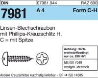 Blechschrauben C2,9x25-H