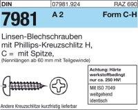 Blechschrauben C6,3x25-H