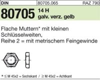 Flache Muttern M30x2