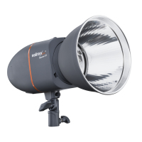 Walimex pro Newcomer 200 Fotostudio-Blitzlicht 200 Ws 1/1200 s Grau