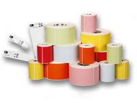 Wristband, Nylon, 25.4x201.6mmDT, Lam 66218RM / 66213RMCoated, 1in (25.4mm) core, 6/roll, 263/box, Plain Gezondheidszorg