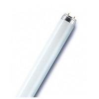 Osram Leuchtstofflampe LUMILUX T8, G13, 36 W / 840, Cool White, 120 cm