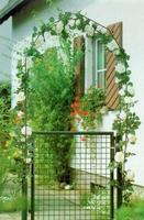 Gartentor zinkphosphatiert grün 100 X 125 cm verst.Band