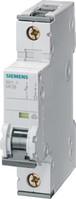 LS-Schalter B10A,1pol,T=70,10kA 5SY4110-6