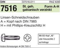 Gew.-Schneidschrauben AM6x25-H