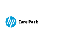 Hewlett Packard Enterprise U3AV6E IT support service
