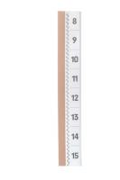 DURABLE selbstkl. Tabe TABFIX®, 200 x 10 mm, 2-zeilig, transparent