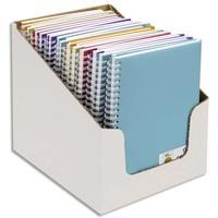 CANSON Carnets de notes 100 pages 120g 14,8x21cm 5 couleurs assorties. Couverture PP(en boîte présentoir)