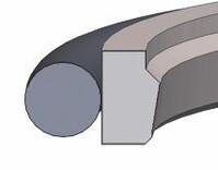 Dichtomatik SPOR31-2T-52,0-67,1-6,3-PT0098 Piston rod seal