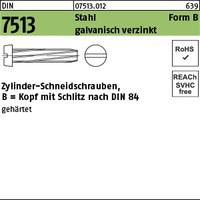DIN 7513 Stahl B M 6 x 20 galv. verzinkt gal Zn S