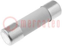Fuse: fuse; quick blow; ceramic; 800mA; 250VAC; 5x20mm; brass; 216