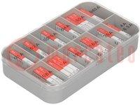 A készlet tartalma: biztosítékok; olvadó; 5x20mm; Érték:13; 200db