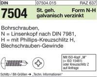 DIN7504 N6,3x100-H