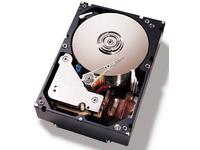"500GB 6Gbps NL 3,5"" SATA SFF **New Retail** 3,5"" Festplatten"