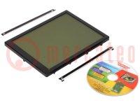 Display: LCD; grafisch; FSTN Positive; 320x240; zwart; LED; PIN:48