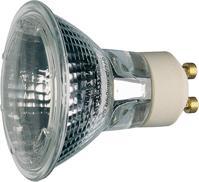 Hochvolt-Halogenlampe 50W/GU10 40 Grad, PAR16, D=51mm, L=55mm