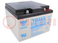 Re-battery: acid-lead; 12V; 24Ah; maintenance-free; AGM