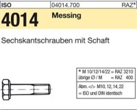 ISO4014 M10x60