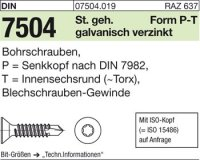 DIN7504 P5,5x25-T25