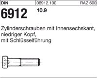 DIN6912 M10 x 20 mm Stahl 10.9