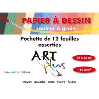 ART PLUS Pochette de 12 feuilles dessin couleurs assorties 160g format 24x32cm